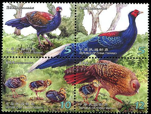 保育鳥類郵票-藍腹鷴