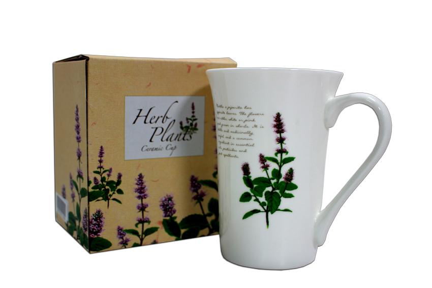 香草植物杯盤組-鳳梨鼠尾草