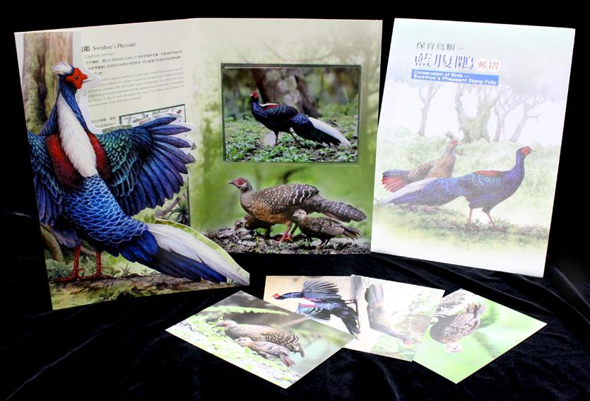 保育鳥類~藍腹鷴郵摺